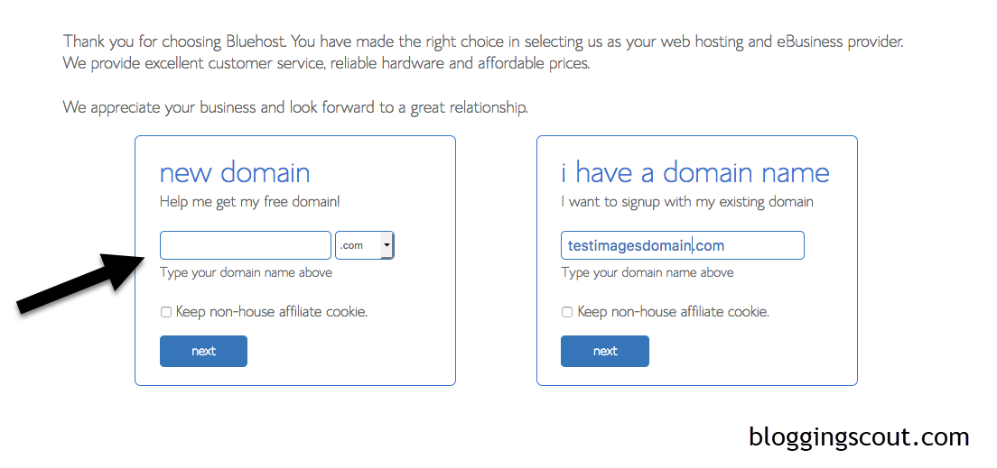 choose-domain-name-with-bluehost