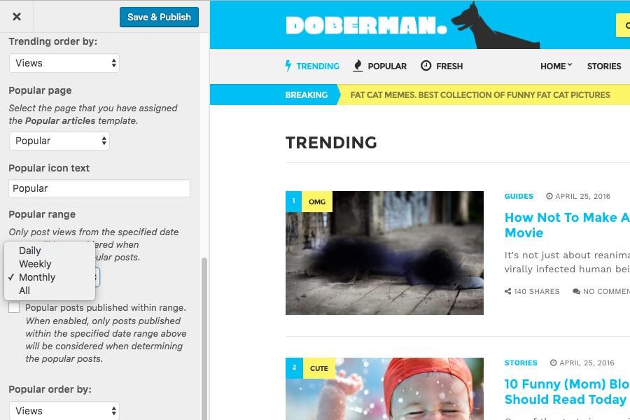 Doberman CSSIgniter Theme